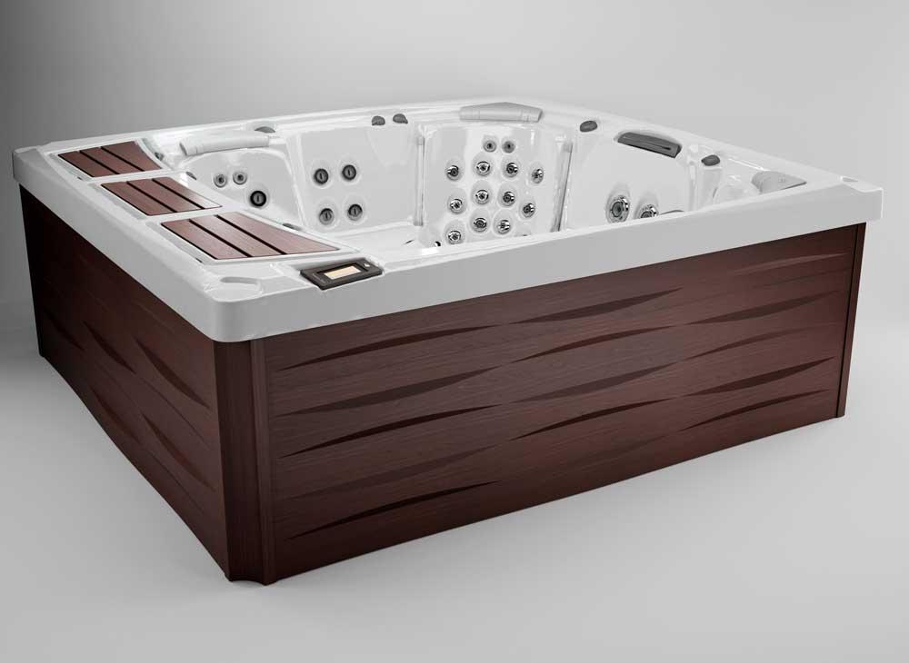 Premout Sundance Spas 980 hot tub